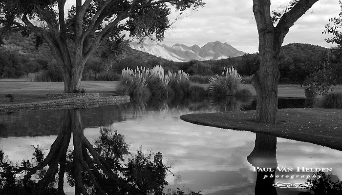 The Pond at Tres Alamos Ranch